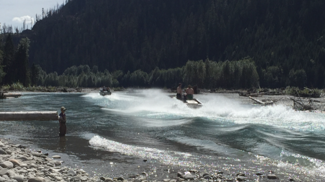 Speeding jet boats on the upper Pitt River is a cause for concern, environmentalists and advocates say.