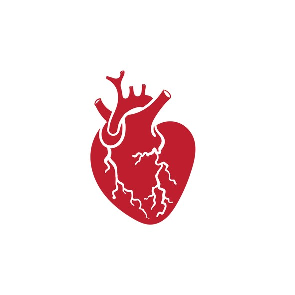 heart-gettyimages