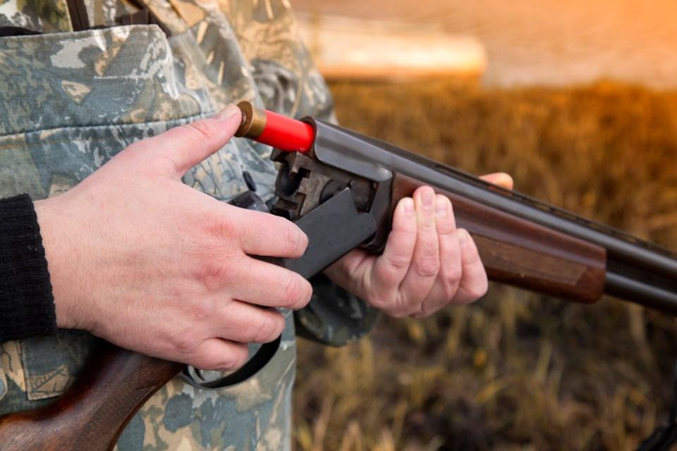hunting hunt hunter hunts gun guns weapon