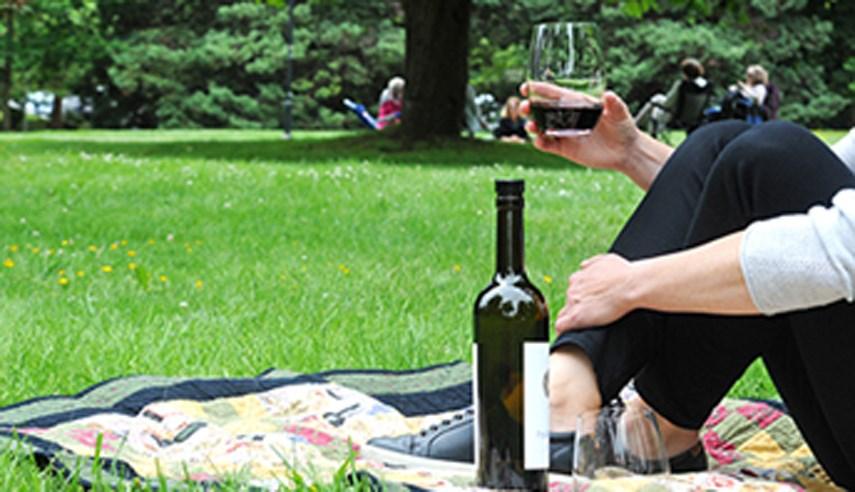 wine in park