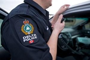 DPD seek child luring suspect