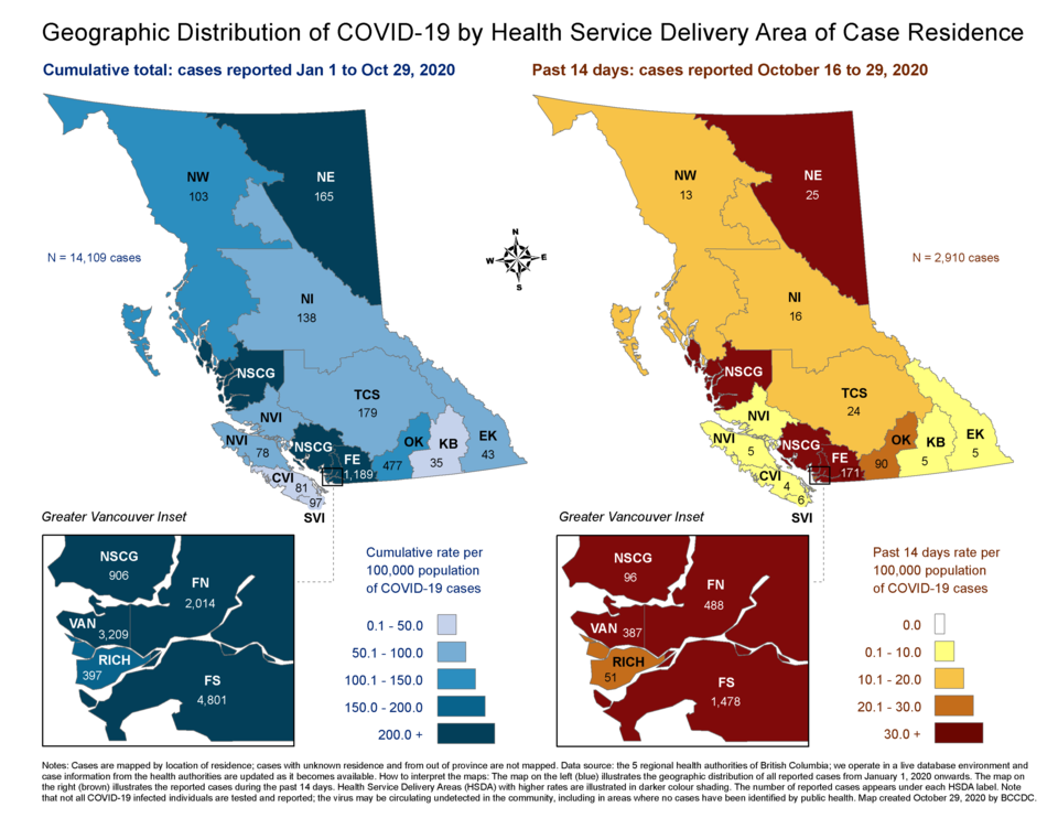 COVID-19 geographic distribution Oct. 16 - 29
