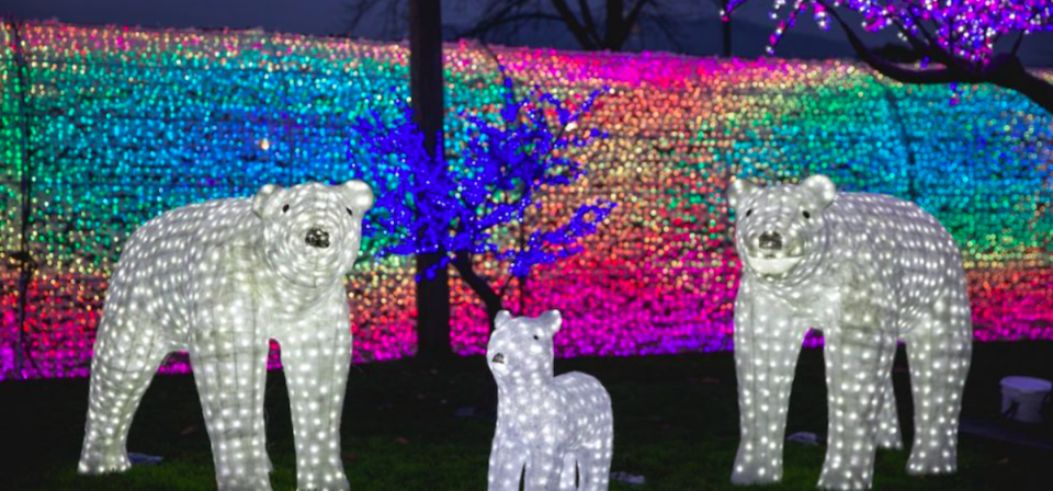 Holiday light display at WinterLights in Vancouver.