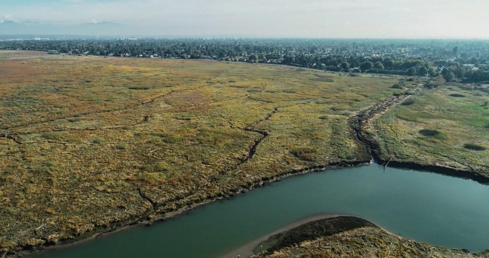 fraser river estuary