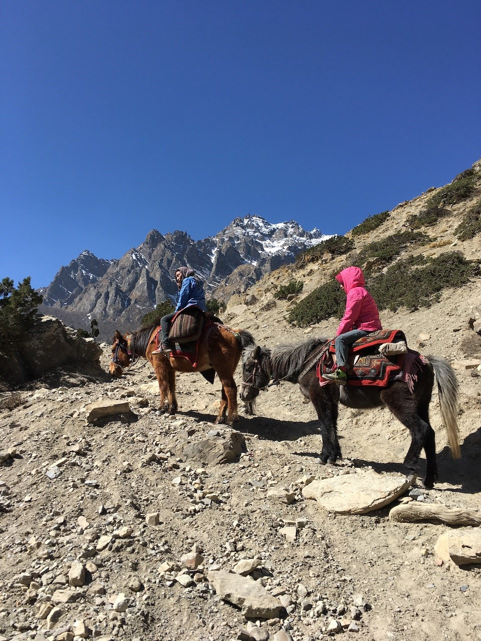 Squamish mountaineer Michael Schauch memoir documents his humanitarian efforts in Nepal