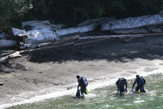 Scuba divers emerge from the water in West Vancouver's Whytecliff Park in 2015.