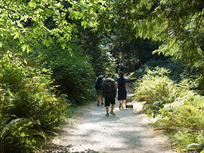 Powell River parks and trails