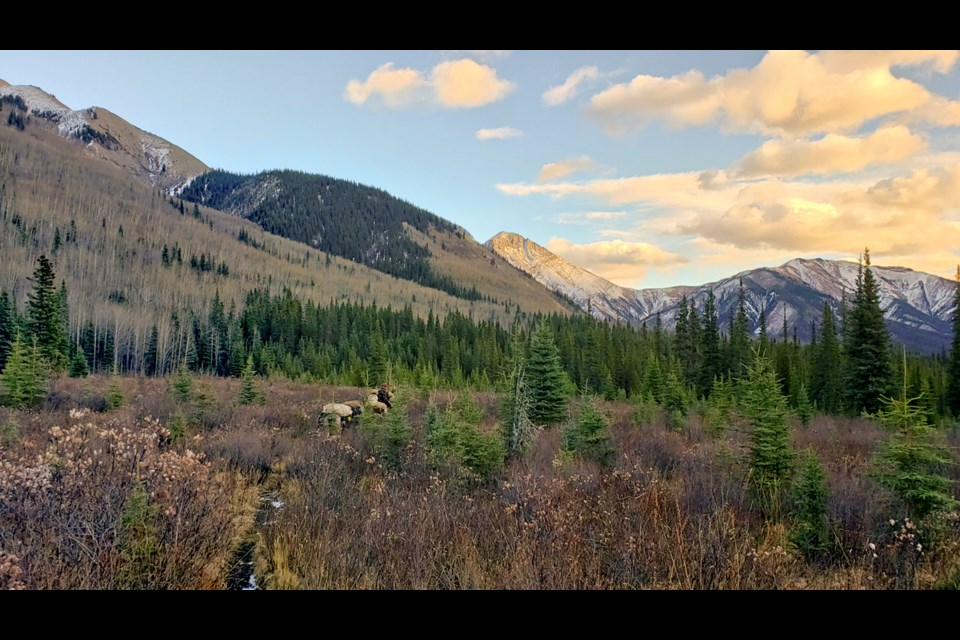Hunting in the Northern Rockies.