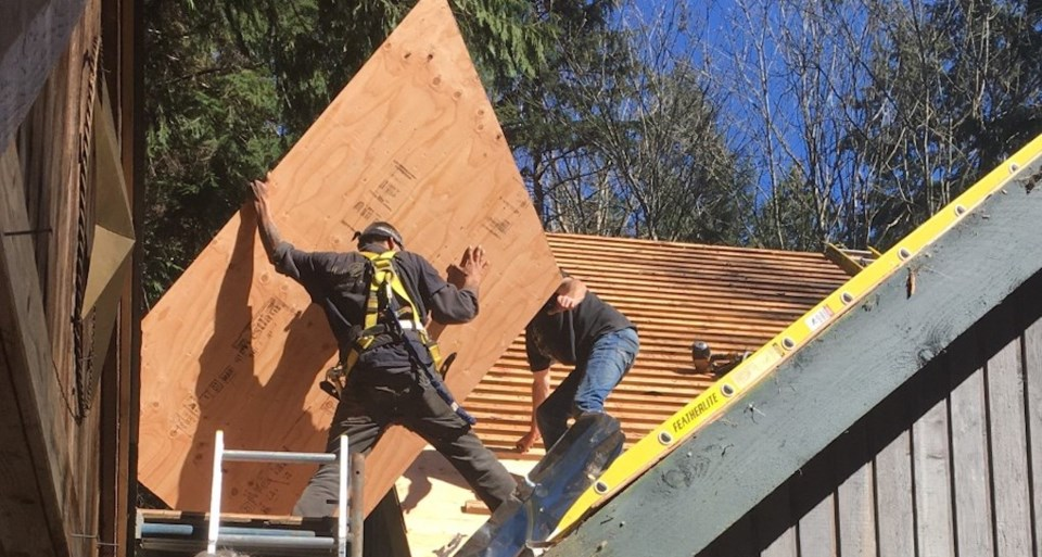 Workers wrestle a sheet of plywood onto a roof replacement April 12.  Western Investor