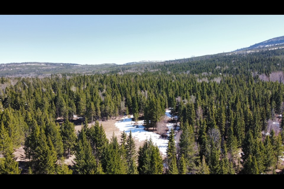 The 160-acre parcel is located in the upscale community of Barnhartvale. Photo by:Land Professionals.