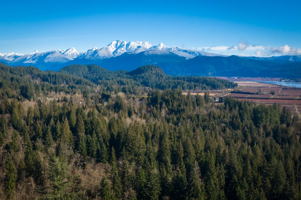 The Burke Mountain neighbourhood includes 180 acres of active parks, 23 acres of future planned parks, and an active mountain biking and hiking community.