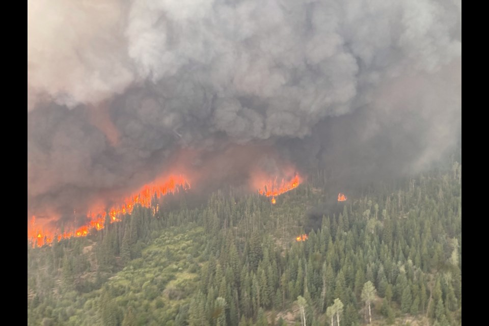 The Tremont Creek wildfire has grown to an estimated 20,000 hectares as of July 30, 2021.