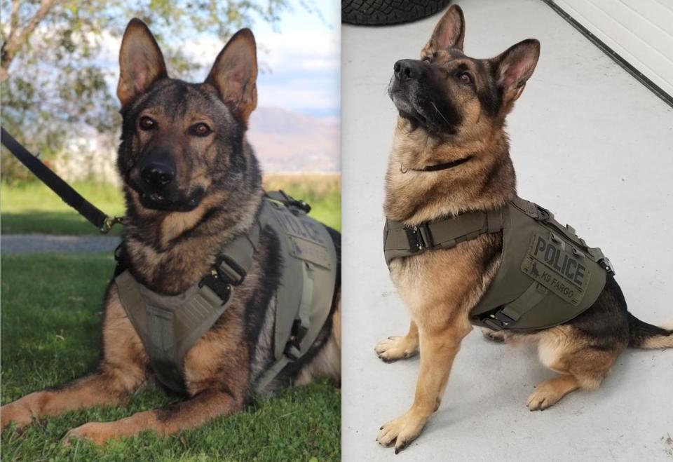 police dogs_fargo_mako