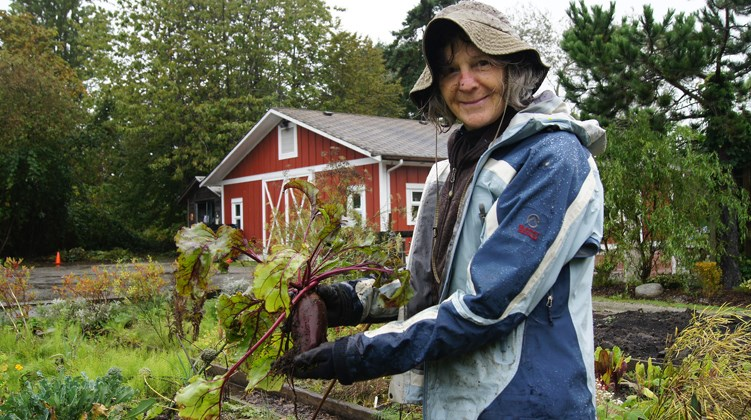 Graeme Wood/Special to the News Ann Metcalfe helps Gilmore elementary students plant vegetables. This month, she'll be teaching them how to make a root vegetable soup. The Thompson neighbourhood contains some of the city's best natural vistas and gardens.