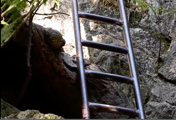 Ladder the Squamish Chief