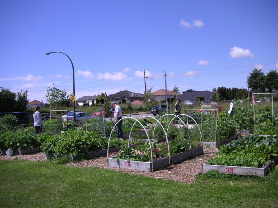 ladner community garden
