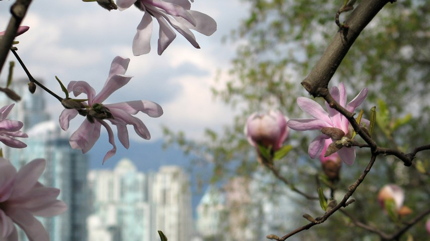 Vancouver spring