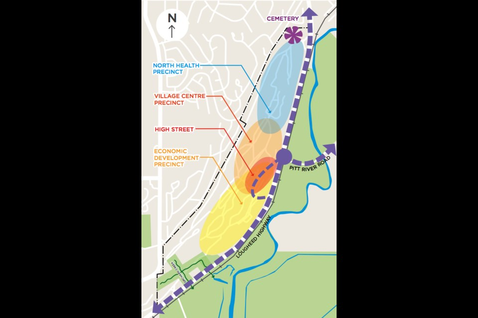 A high-level map of the precincts proposed for the Riverview Hospital lands in Coquitlam. The map was presented as part of the visioning document unveiled last month by BC Housing.