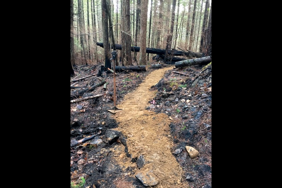 Members of the mountain biking community came together to work on a new trail that runs through the burnt-out area close to Wormy Lake.