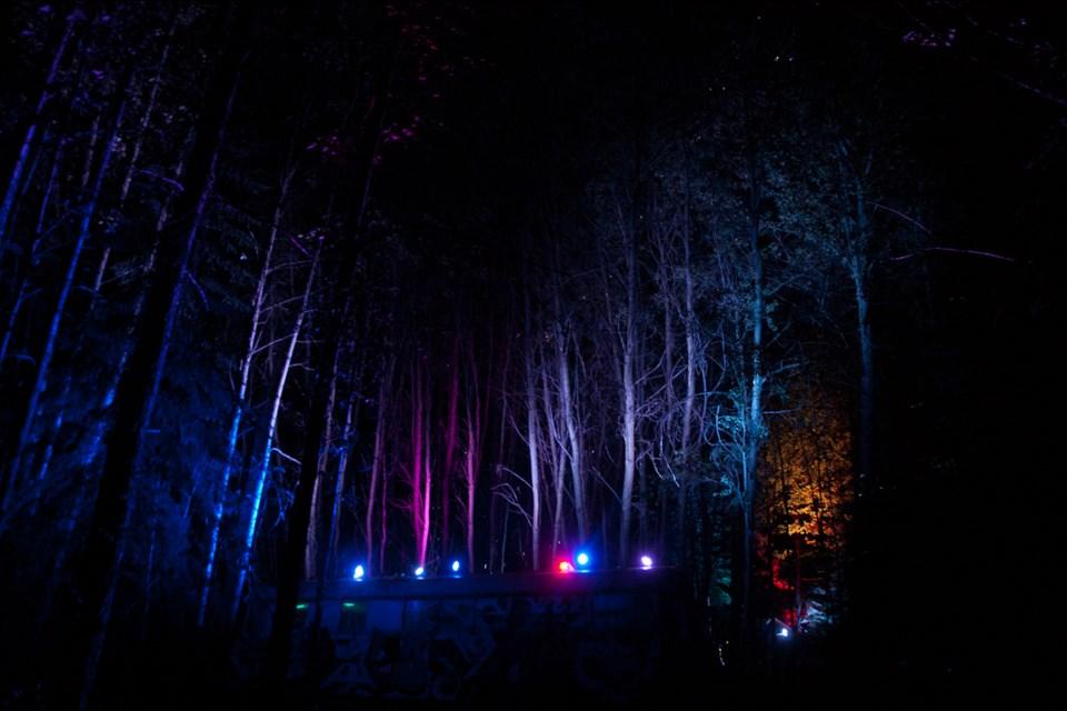 Kaleidoscopic aspen grove at the Awakening Music Festival where everything gets better at night.