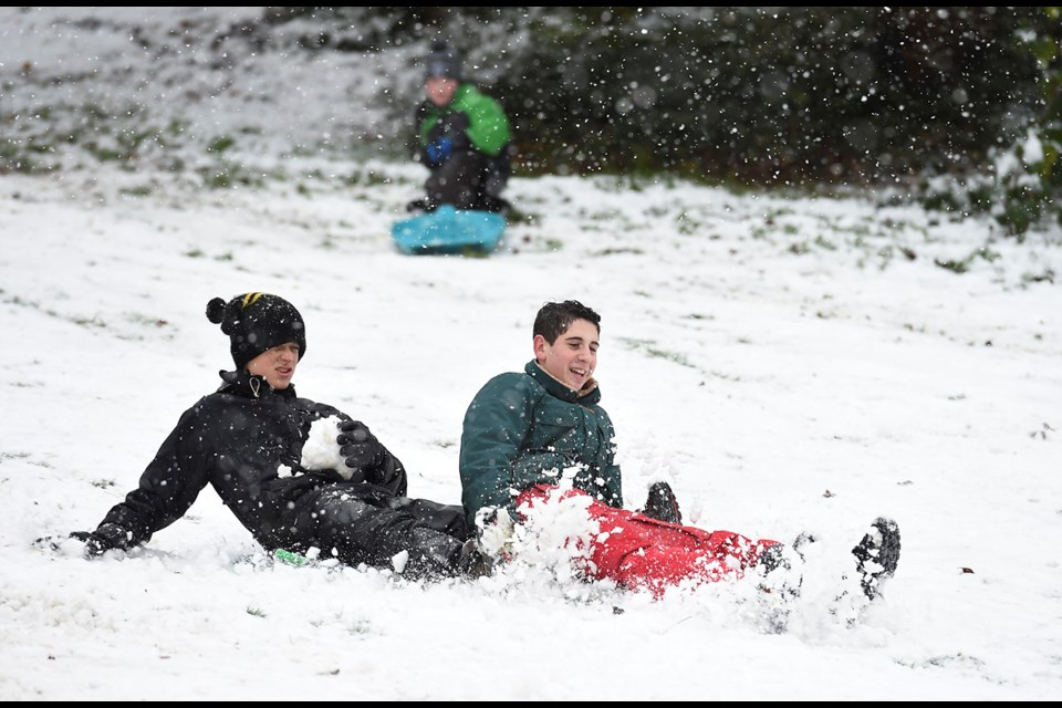 Queen Elizabeth park was popular for snow sports Monday morning. Nadav Sadlik (left), 14, and Ben Bogdonov, 15, slide down the slopes. Photo Dan Toulgoet