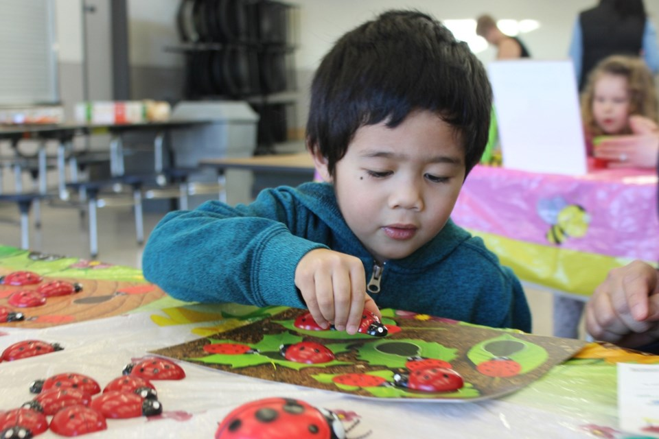 Mark Albete matches up the ladybugs at the Ladybug Counting station. Photo by Darcie Khounnoraj