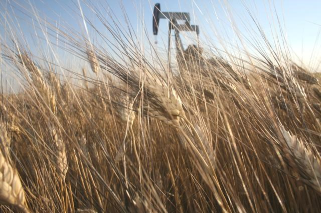 wheat pumpjack