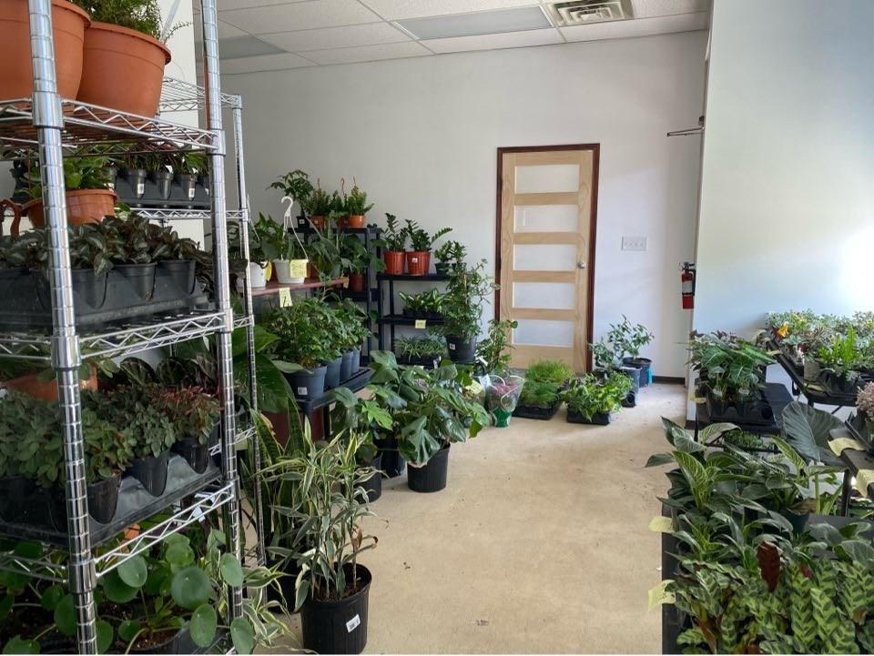Plant Bench