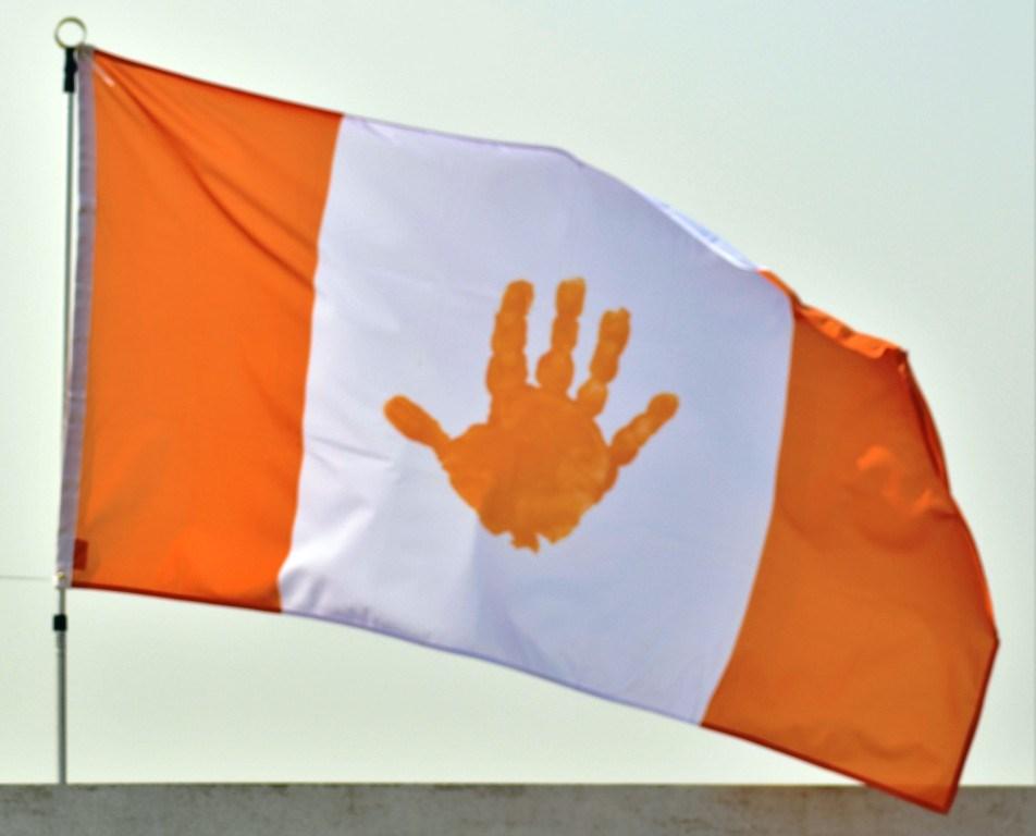 FSIN Flag1.JPG