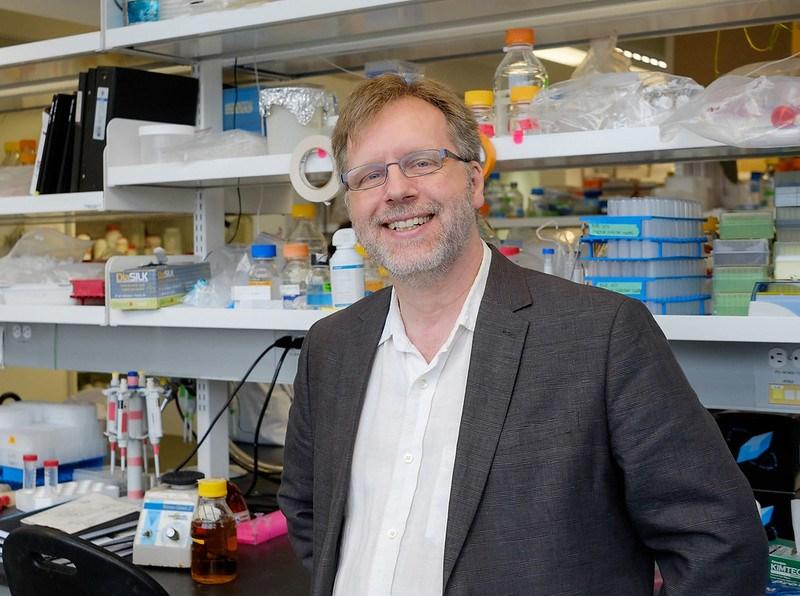 Dr. Albert Berghuis