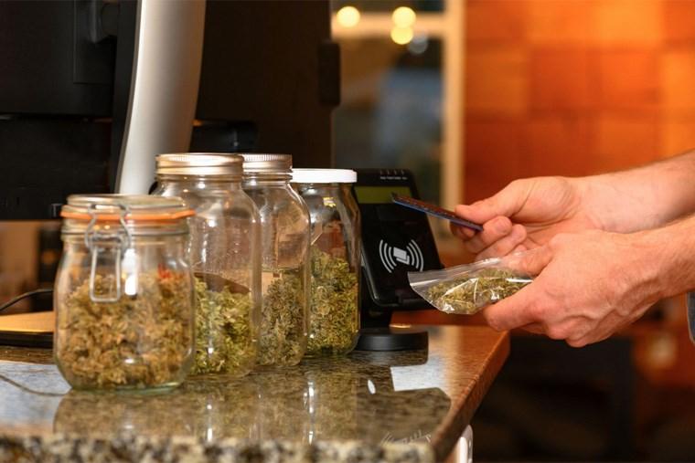 32A_5-hot-new-cannabis-strains
