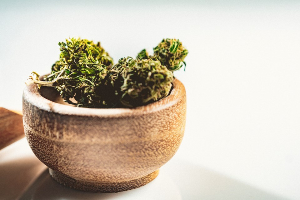 Article-2C_indica-vs-sativa-heres-what-you-need-to-know