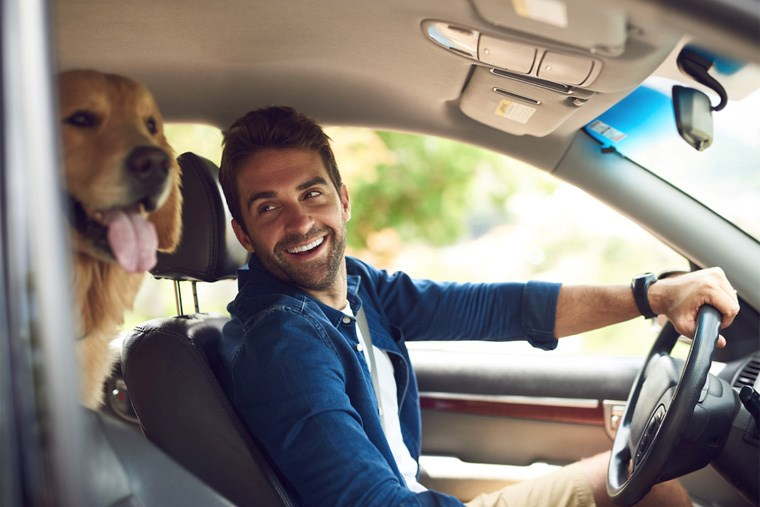 Article-17A_pet-proof-your-vehicle-with-this-helpful-guide