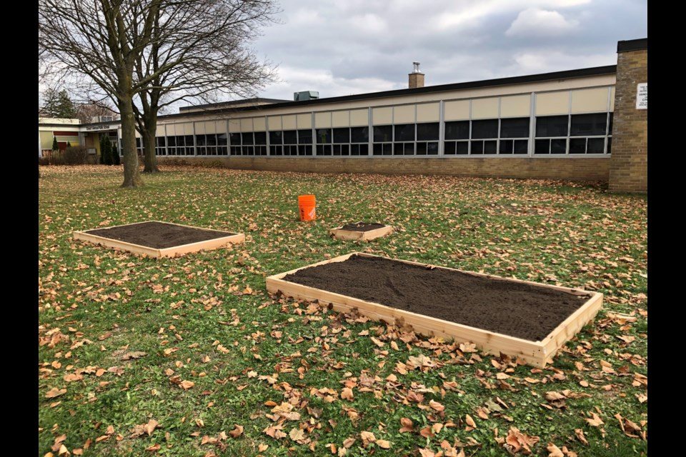 The large front yard at Stewart Avenue Public School is an ideal location for a vegetable garden and an outdoor classroom funded, in part by the Tim Walker Memorial Award for Environmental Stewardship.