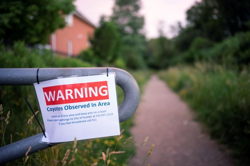 20190705 Coyote Warning KA (1)