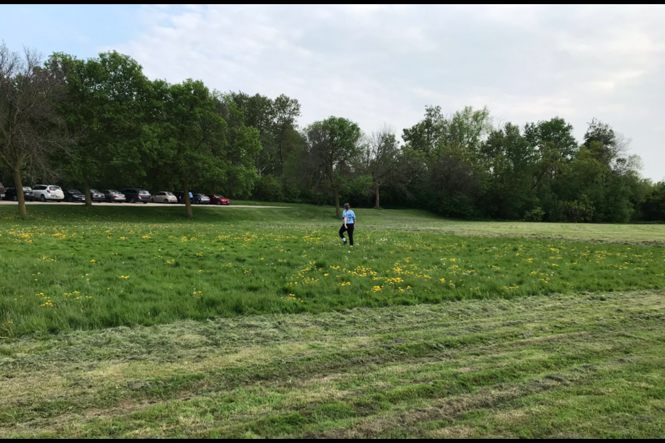City crews had to stop mowing halfway through the job at a ball diamond at Norm Jary Park because the ground was too wet. Twitter photo