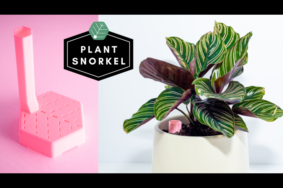 The Plant Snorkel is a plant watering device developed by a bunch of University of Guelph grads.