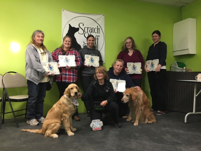 Course teaches first aid for pets