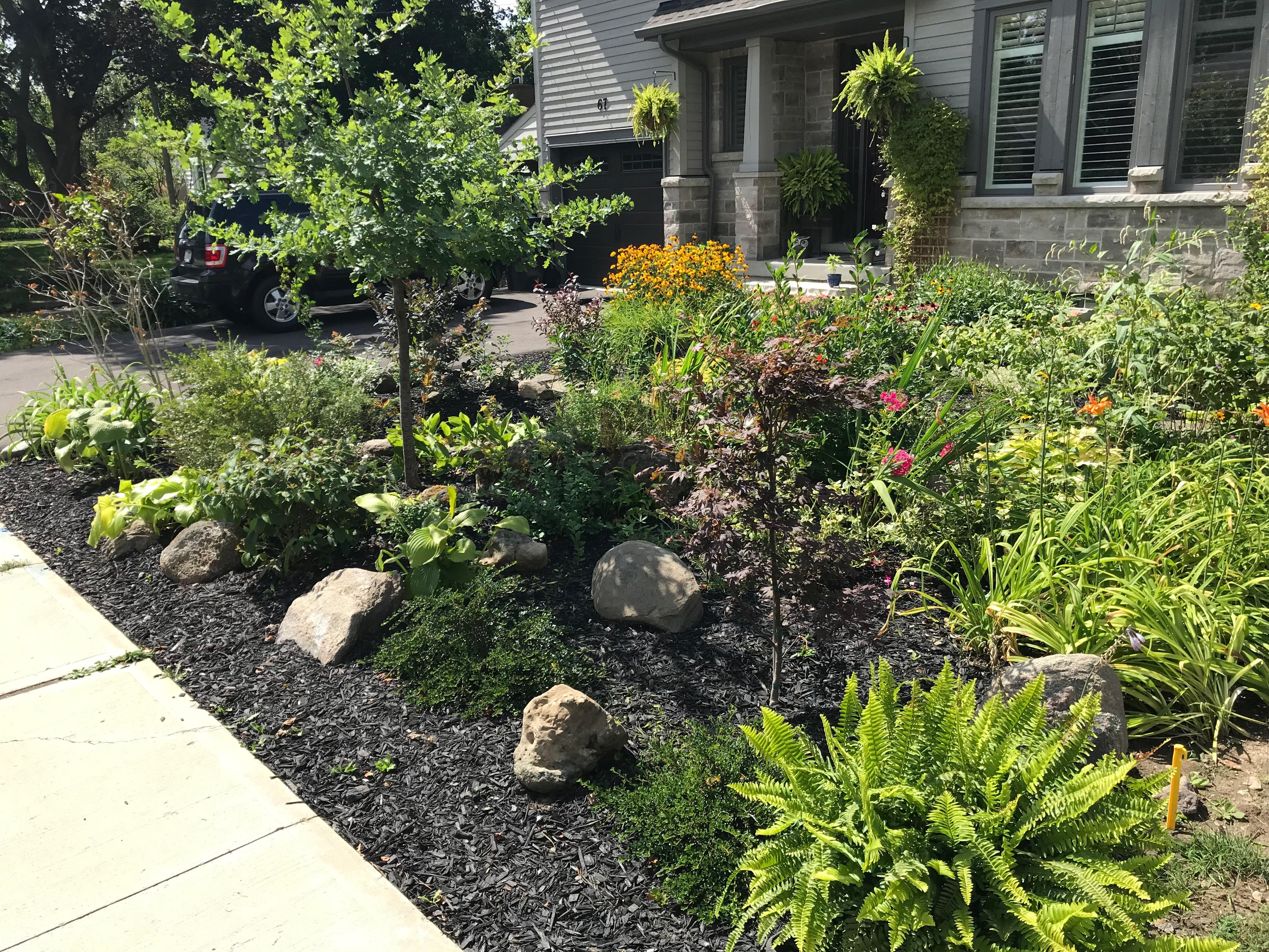 Rock Gardens Offer A Low Maintenance Option For Gardeners
