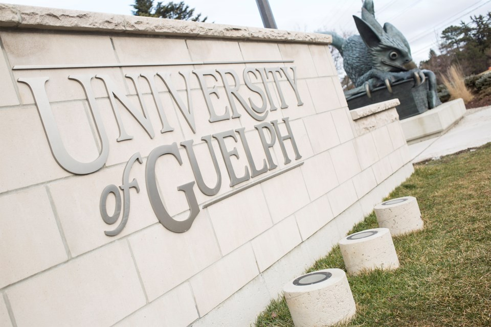 University of Guelph file photo. Kenneth Armstrong/GuelphToday