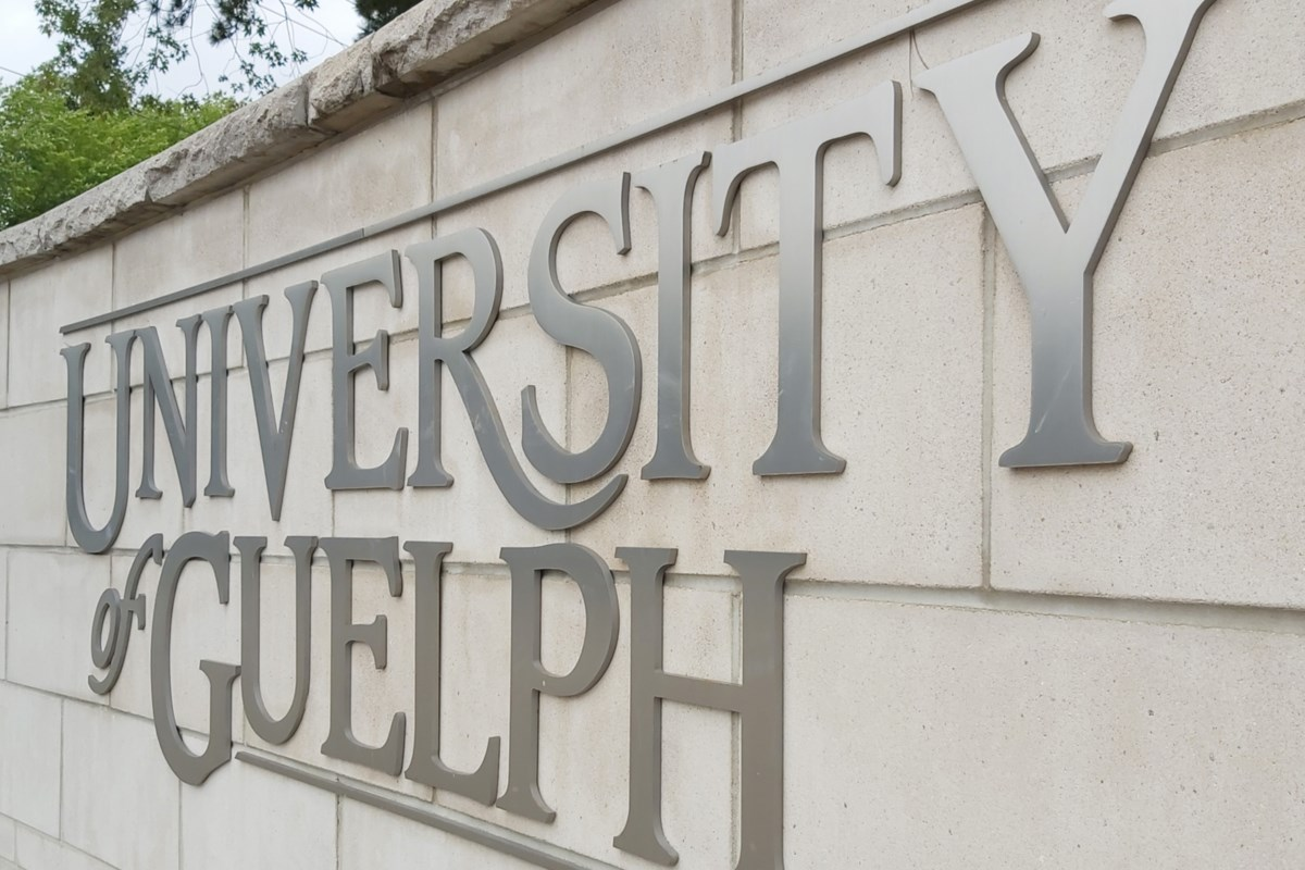 University of Guelph reveals contingency plan for winter 2022 semester
