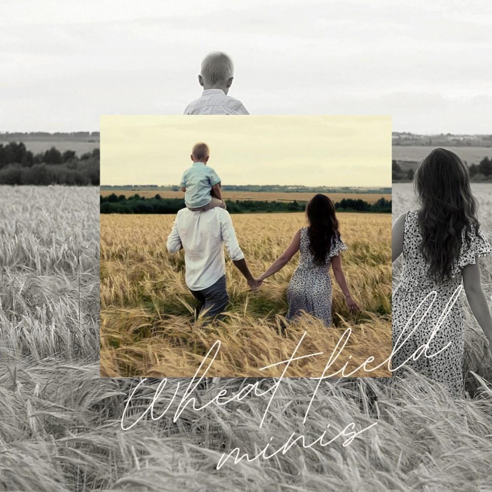 20210713 wheat field minis AD