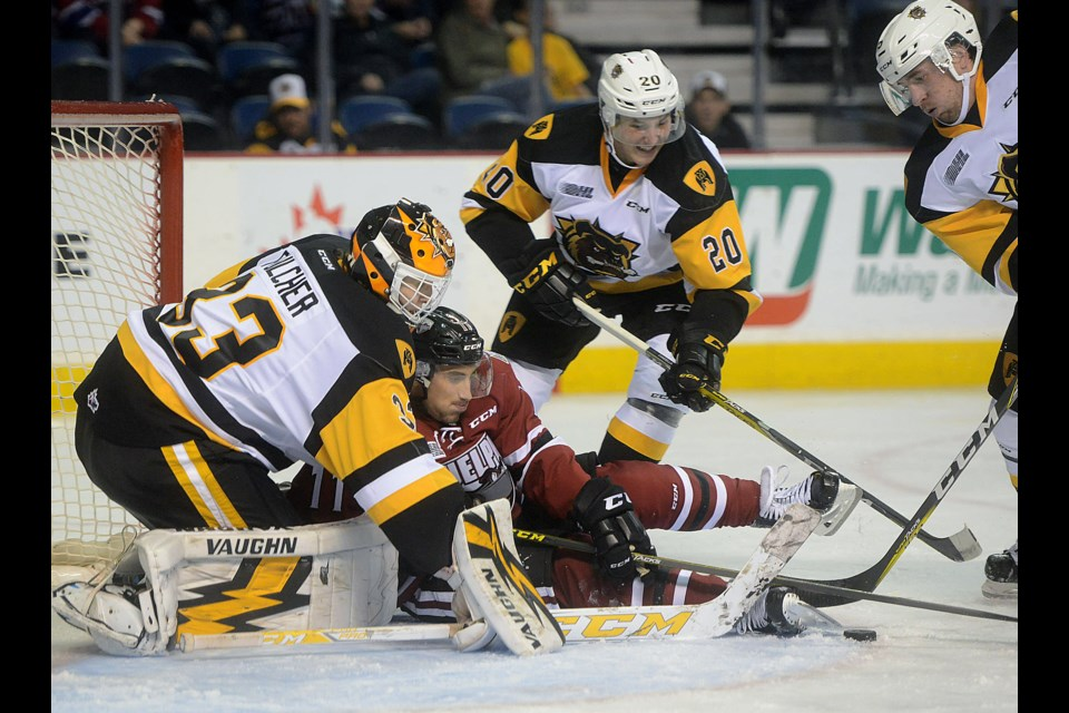 The Guelph Storm's Nic Sicoly reaches for the puck in front of Hamilton Bulldogs goaltender Kaden Fulcher Saturday, Oct. 8, 2016, in Hamilton. Tony Saxon/GuelphToday
