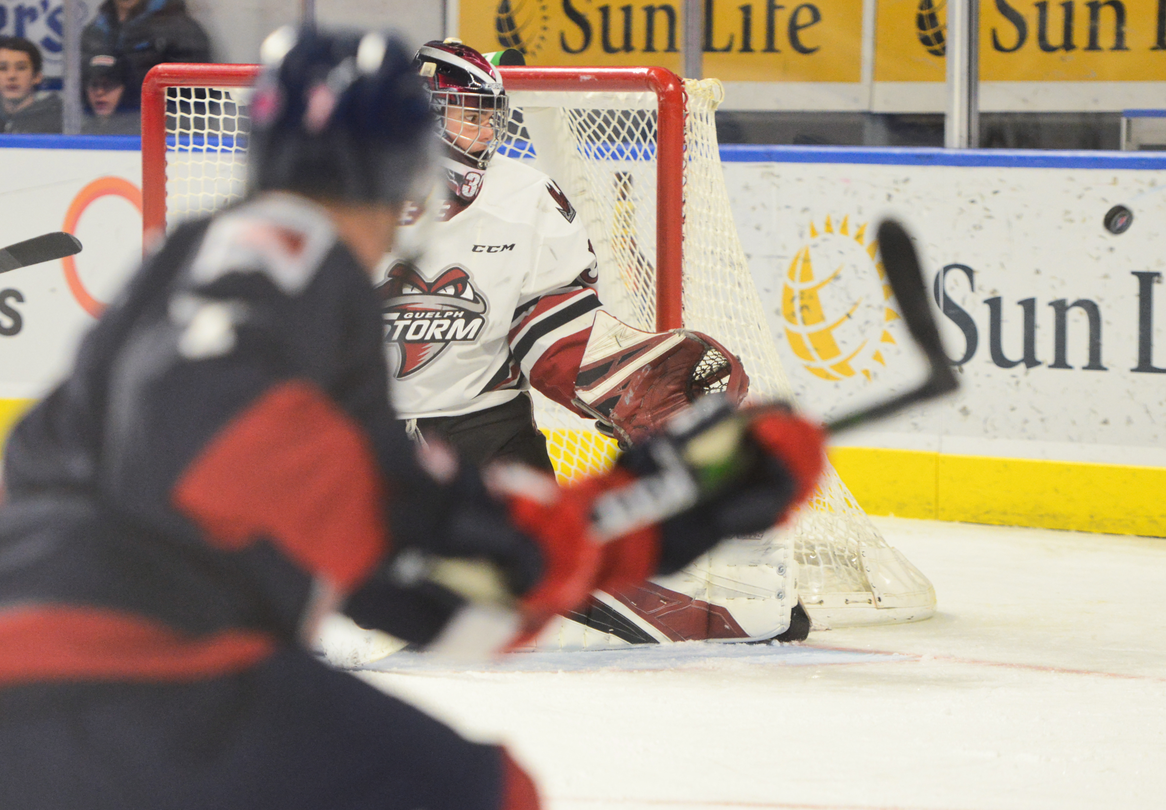 Make it five straight for red hot Guelph Storm (6 photos)