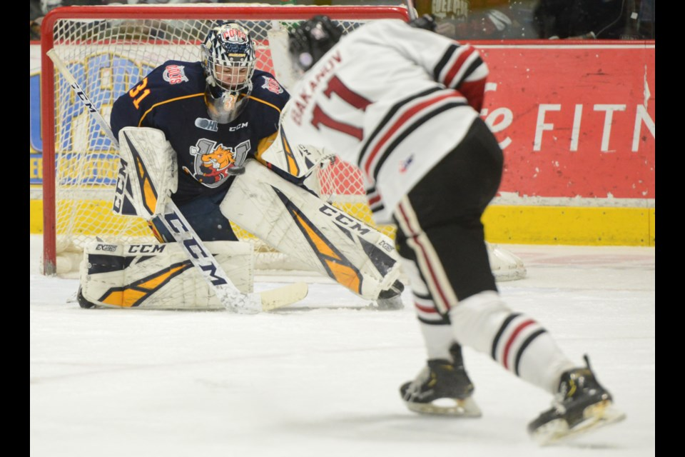 Guelph Storm winger Andrei Bakanov lets a shot go at Barrie Colts goaltender Jet Greaves Friday at the Sleeman Centre. Tony Saxon/GuelphToday