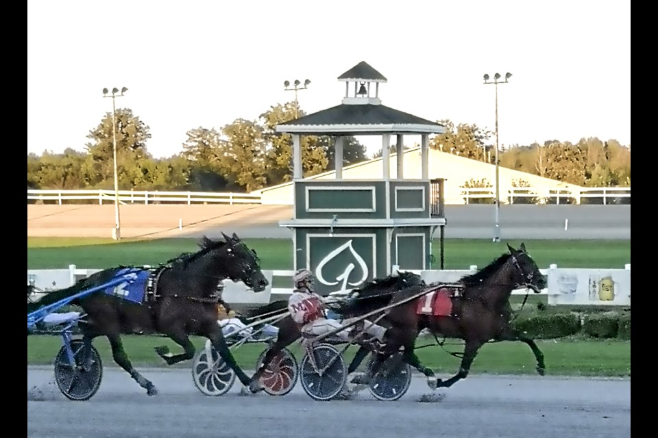 Bill Megens drives Opas Faith across the finish line at Flamboro Downs first in a race there early this month. With the win, 87-year-old Megens became the oldest winning driver in the track's history.