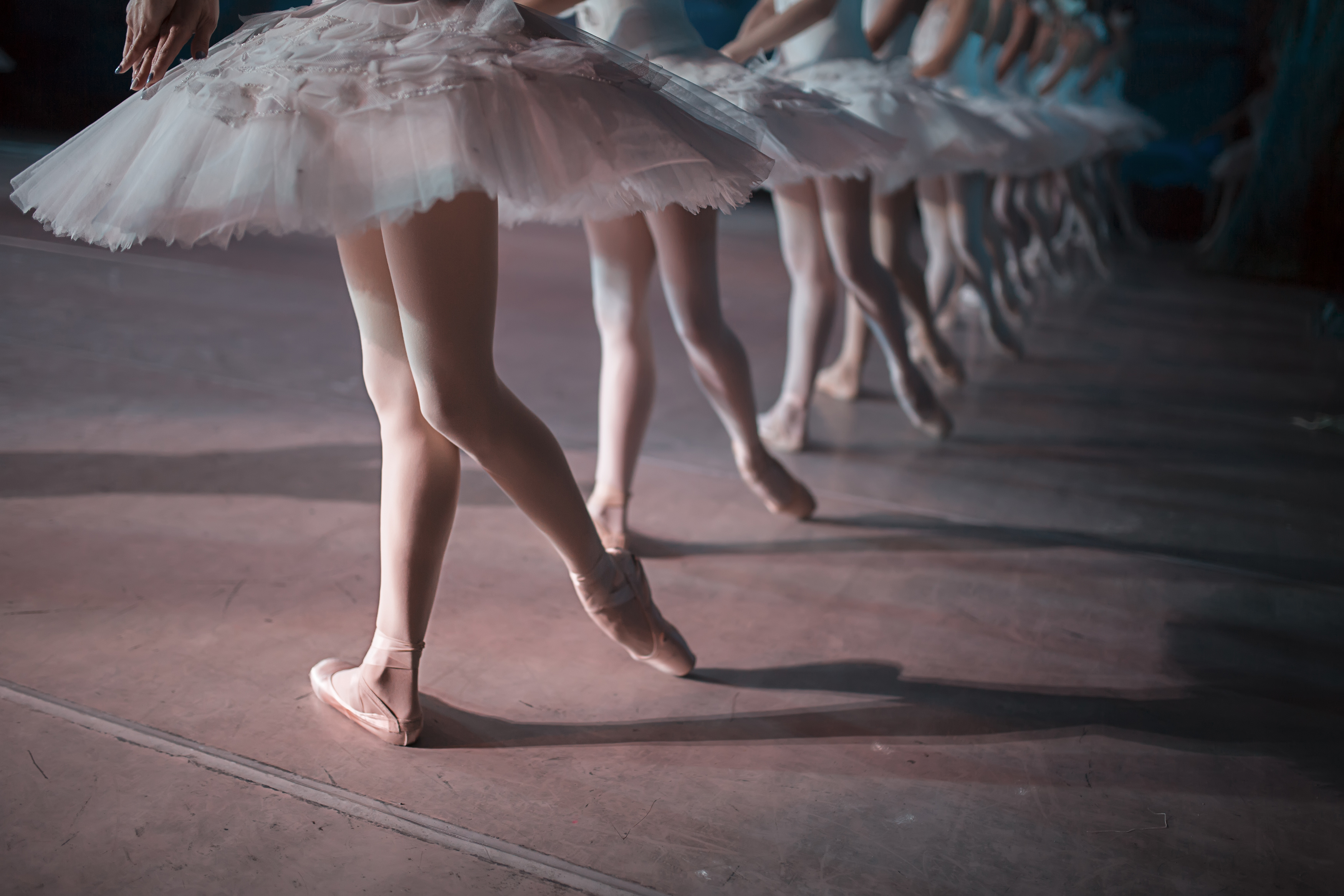 Canada's National Ballet School to hold auditions here