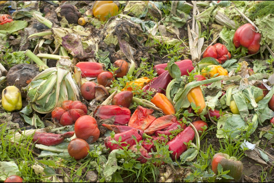 The project aims to create a cost-effective solution to keep food waste out of landfills(Stock photo)