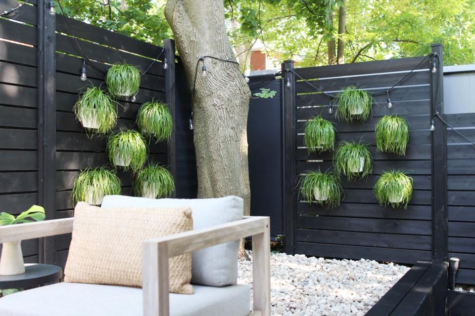 Grass walls at 39 Derry Street