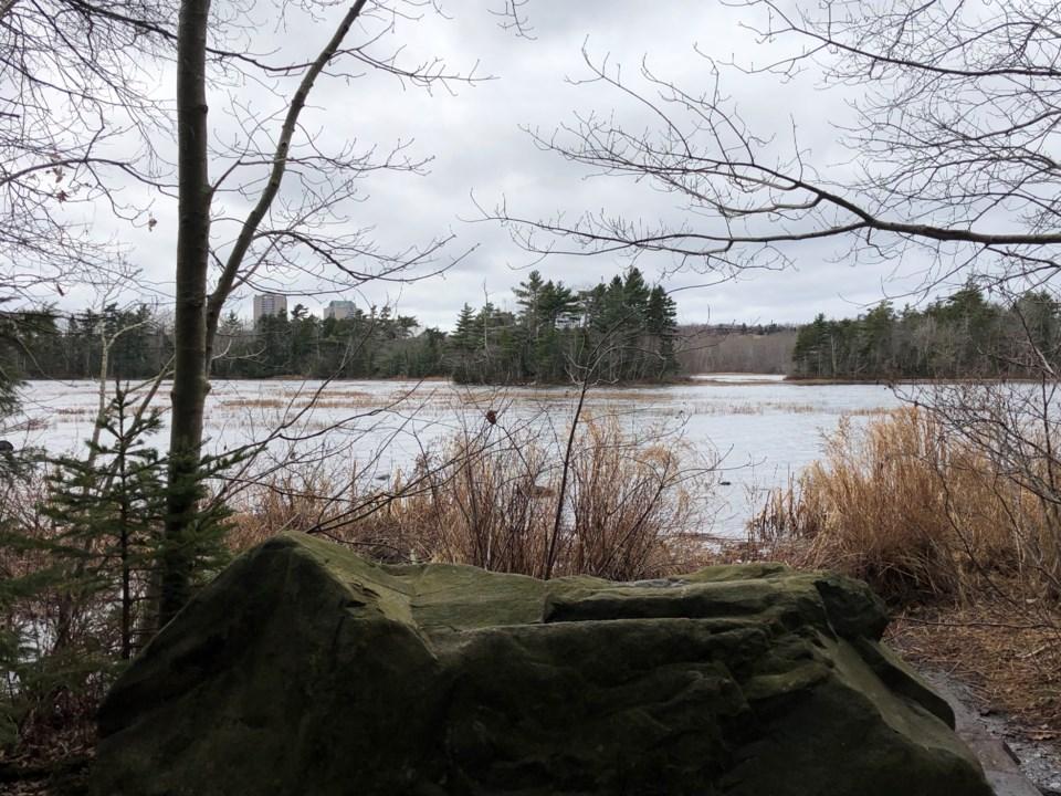 042219-shubie park-lake micmac-IMG_8978